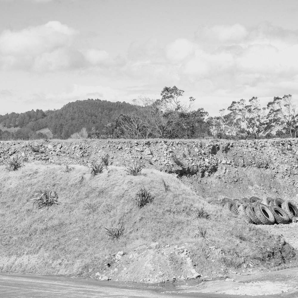 — Revegetation.  Martha Gold Mine, Waihi, New Zealand.